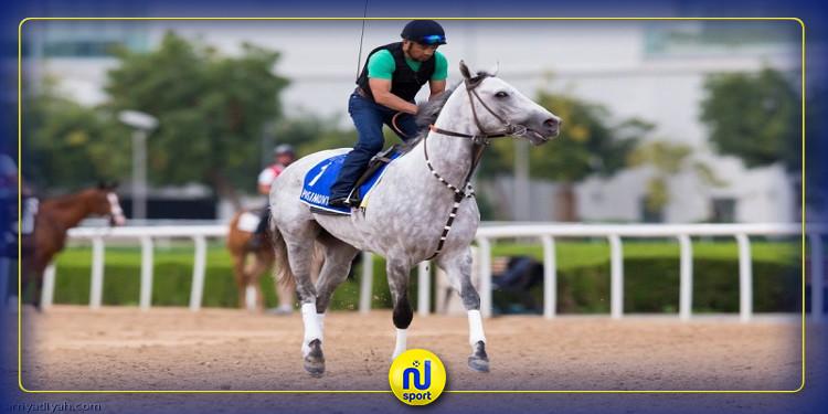 'فيروس كورونا' يلغي كأس دبي العالمية للخيول